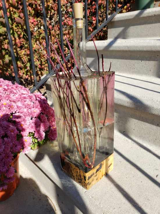 Red Twig Dogwood Lamp outdoors designed and built by Swerl Designs LLC